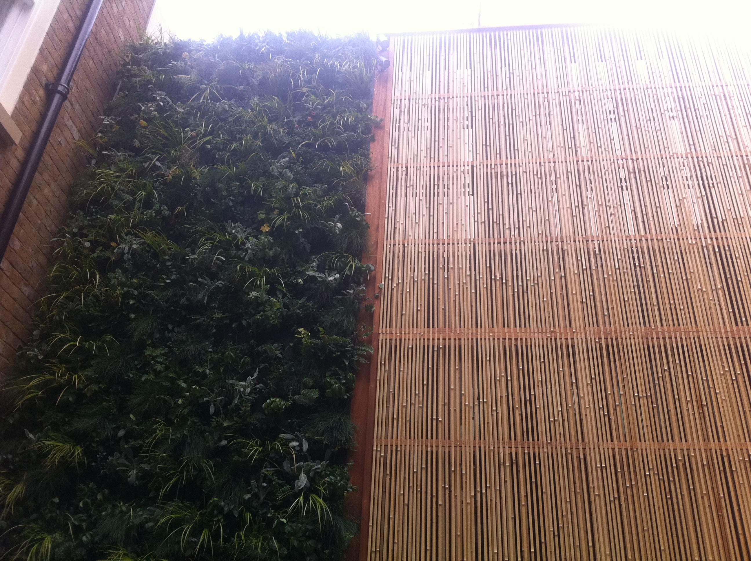 Bamboo Garden Screen WindsorWorkshop